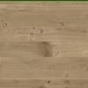 Sol stratifié Grande narrow 083 chêne coquillage